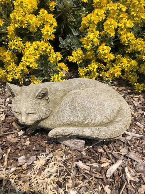 A sleeping, stone cat. A garden ornament.