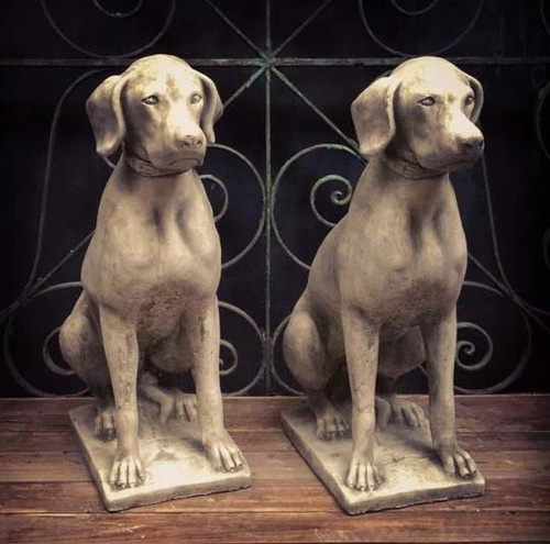 A pair of large, detailed, stone hunting dogs. Garden and Home ornaments.