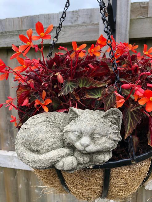 Reconstituted Stone Cat Kitten Statue