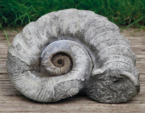 Stone Limestone Fossil Ammonite Garden Ornament Statue