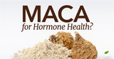 Living Traditionally is Introducing Maca Powder