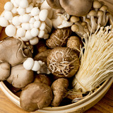 Mushrooms:  Nutrition and Medicinal Facts