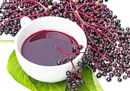 elderberry-pic-2.jpg