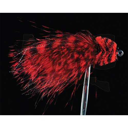 Barred Marabou Toad -Red/Black 1/018977