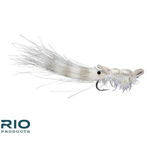 Guido Shrimp White 1/040699