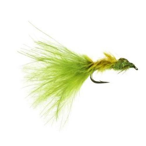 Damsel Leech Thurman Olive 1223437