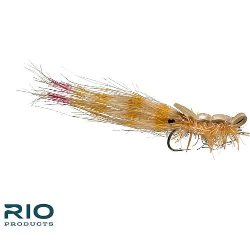 Guido Shrimp Tan 1/040698
