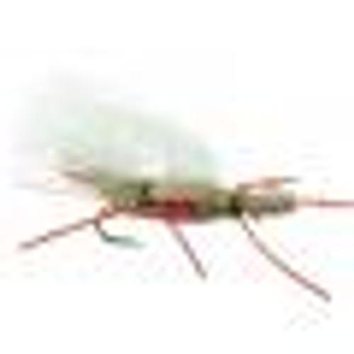 CHUBBY CHERNOBYL ROYAL 0827091