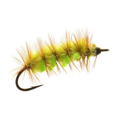 EZ Meal Caterpilar Green/Chartreuse 838683