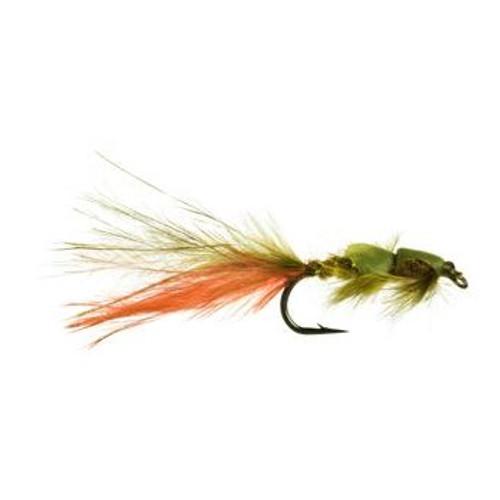Zack Attack Damsel Olive/Orange 1423721
