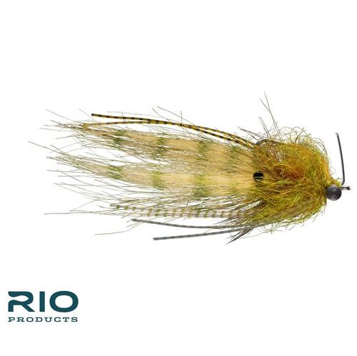 Rio's Shrimp Tease Olive 440799
