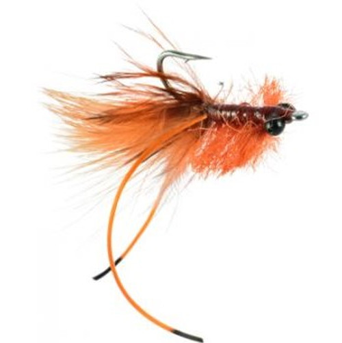 CARPIN TOAD LIVELY RUST 823965
