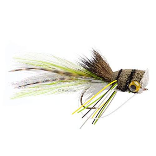 DH Bug Frog 0623847