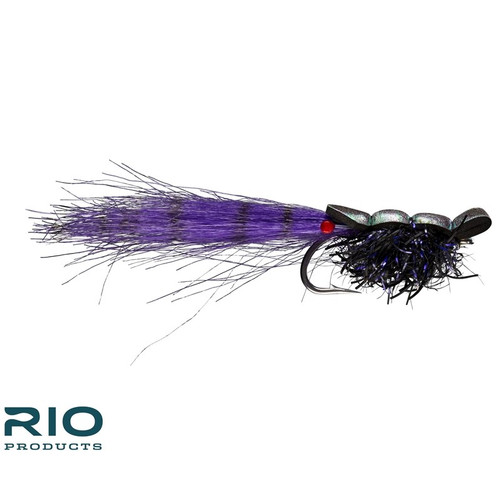 Guido Shrimp Black 1/040672
