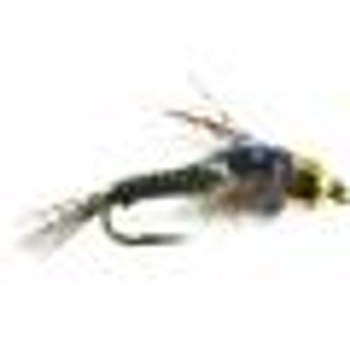 HARE COPPER OLIVE/BLACK 1626366