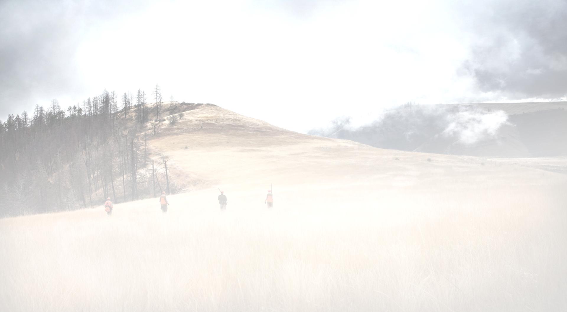 upland bird hunting scene