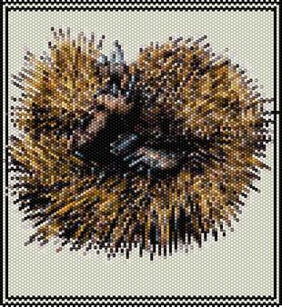 Peyote Stitch Echidna Pattern (Odd Count) - Download