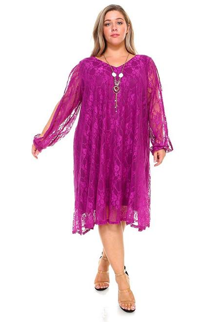 Lace Spit Sleeve Dress