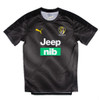 Richmond Tigers - 2020 PUMA Training Tee