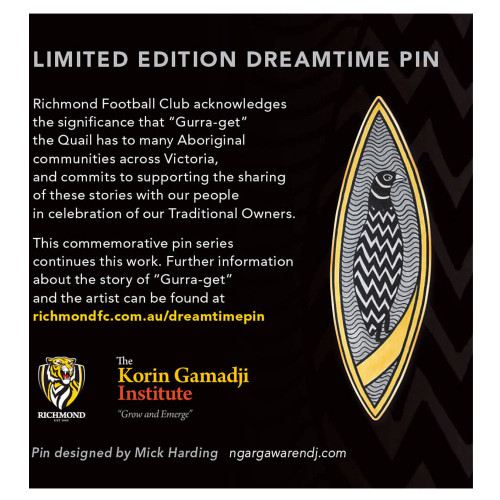 2016 dreamtime round lapel pin. Oval shaped with indigenous artwork on front.