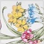 Ladybug swatch image