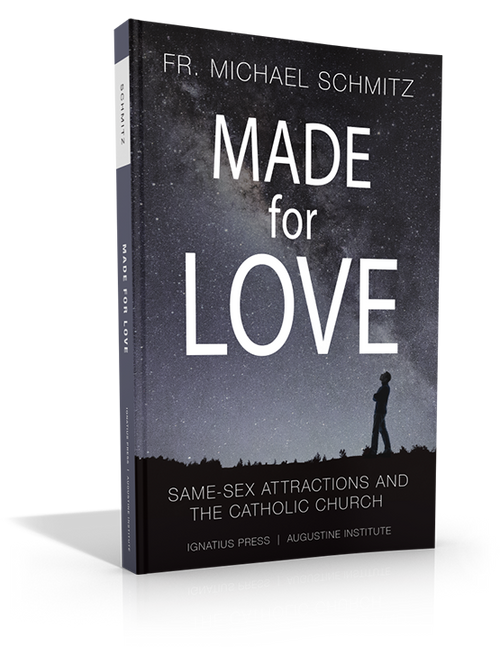 Made for Love: Same-Sex Attractions and the Catholic Church (Paperbook)