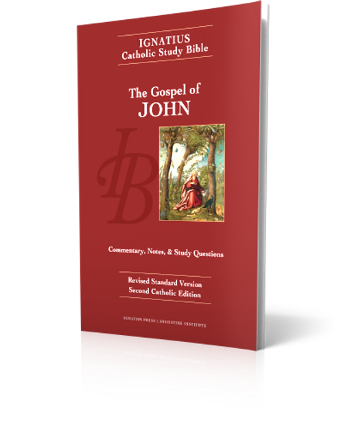 The Gospel of John - Study Bible (Paperback)