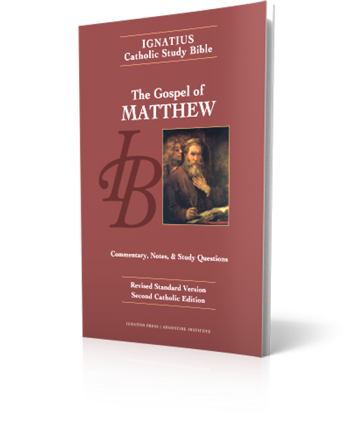 The Gospel of Matthew - Study Bible (Paperback)