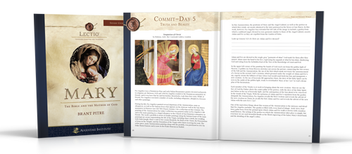 Lectio: Mary Participant Guide 5-Pack