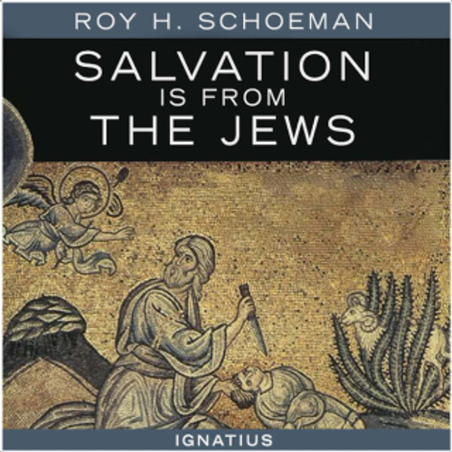 Salvation is From the Jews Audiobook