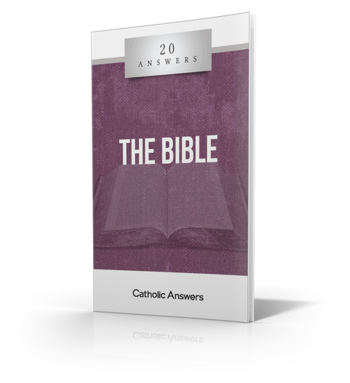 The Bible - Booklet