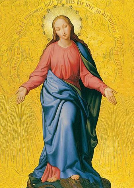 Immaculata 5 x 7 Prayer Cards-(50 pk)
