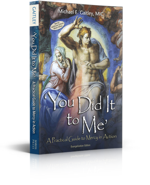 You Did It to Me: A Practical Guide to Mercy in Action (Evangelization Edition)