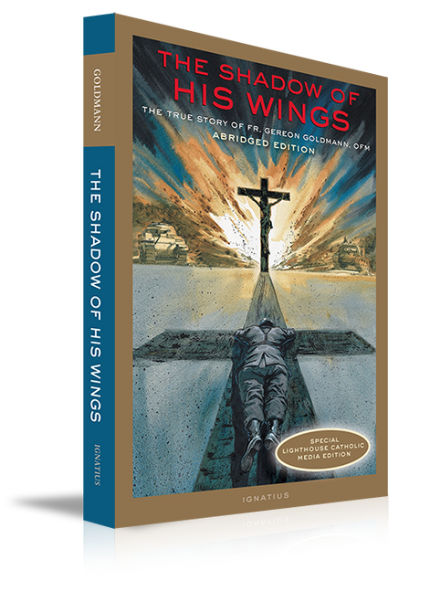 The Shadow of His Wings (Paperback)