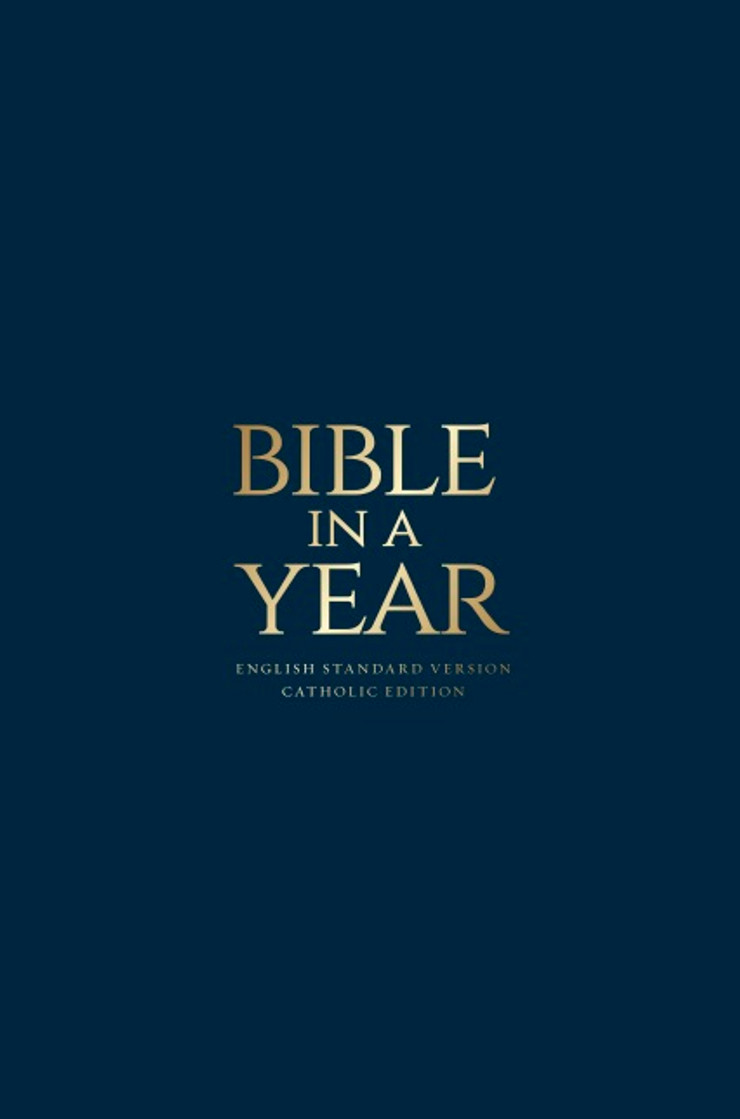 Blue Paperback - Bible in a Year
