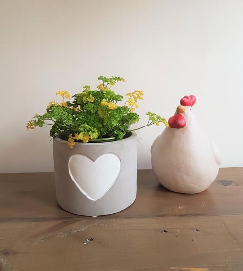 Small Cement Heart Pot