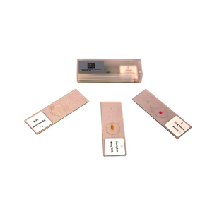 5 Prepared Microscope Slides Specimen Set, Plant and Animal Cells