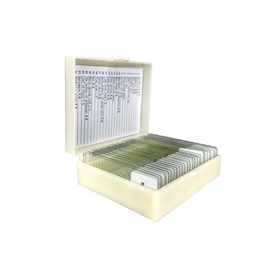 25 Prepared Microscope Slides Specimen Set, General Biology