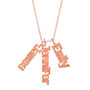Charm Nameplate Necklace