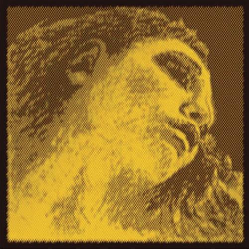Evah Pirazzi Gold Violin E, Ball