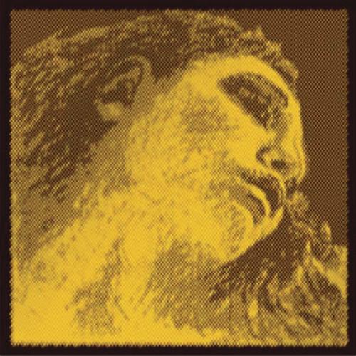 Evah Pirazzi Gold Violin E, Loop