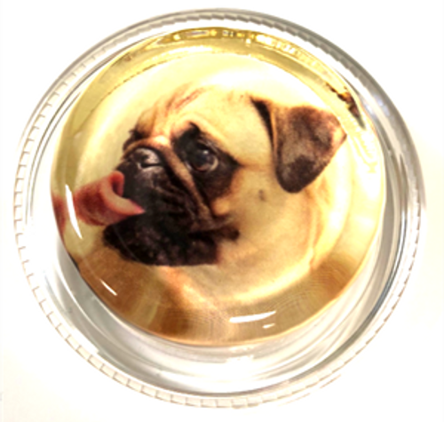 Magic Rosin- Pablo the Pug (PUG)