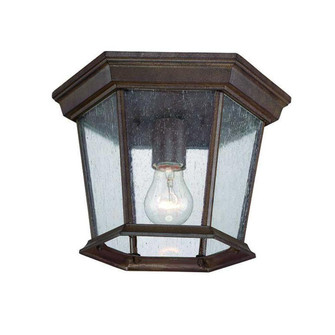 Dover Collection Ceiling-Mount 1-Light Outdoor Burled Walnut Light Fixture (245|5275BW/SD)