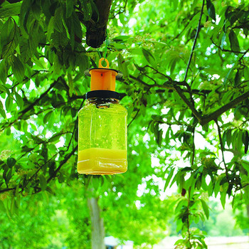 The Buzz Effective Fly Catcher with Insect Attractant Bait Twin Pack