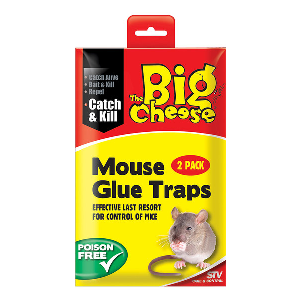 The Big Cheese Mouse Glue Traps Twin Pack