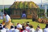 Tongan Kava Ceremonies