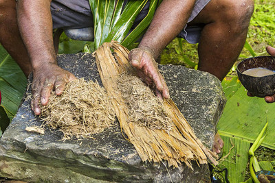 Historical Medicinal uses of Kava