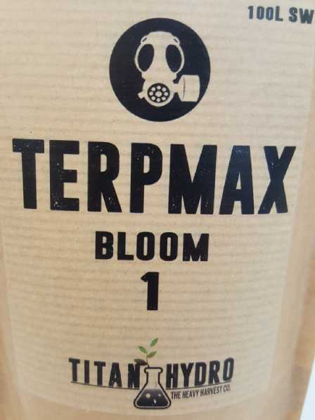 terpmax-bloom1-web.jpg
