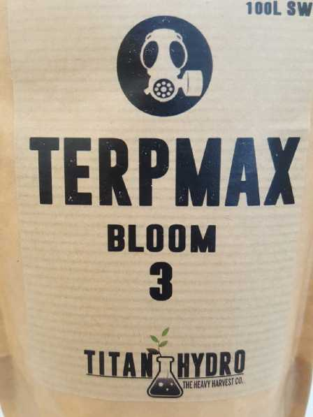 terpmax-bloom3-web.jpg