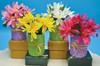Silk Mini-flowers (Set of 4)